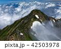 山 鹿島槍ヶ岳 風景の写真 42503978