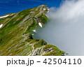 山 鹿島槍ヶ岳 風景の写真 42504110