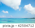 海 晴天 風景の写真 42504712