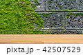 wooden table on concrete with moss background 42507529
