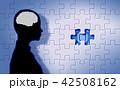 パズル 42508162