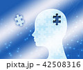 パズル 42508316