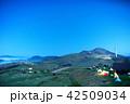姫鶴平キャンプ場 42509034