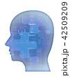 パズル 42509209