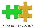パズル 42509307