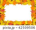 紅葉 枠 フレームのイラスト 42509506