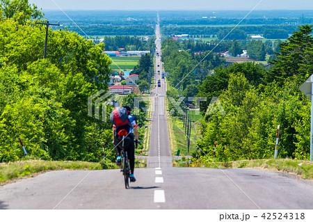 《北海道》天に続く道・スポーツサイクル 42524318