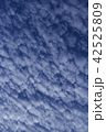 青い空と白い雲 42525809