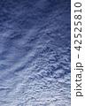 青い空と白い雲 42525810