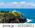 海 晴れ 海岸の写真 42528051