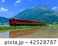 九州の春 42528787