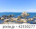 笹川流れ 海岸 風景の写真 42530277