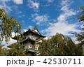 弘前城 城 天守閣の写真 42530711