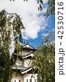 弘前城 城 天守閣の写真 42530716