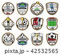 サッカー スポーツ ベクトルのイラスト 42532565