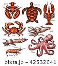 シーフード 海の幸 魚介類のイラスト 42532641