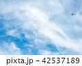 風景 空 雲の写真 42537189