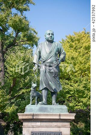 上野公園 西郷銅像 42537992