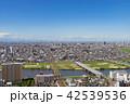 都市 都市風景 町並みの写真 42539536
