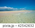 浜島 42542632