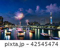 隅田川花火大会 42545474