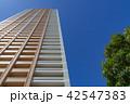 タワーマンション 高層マンション 青空の写真 42547383