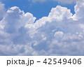 夏空 夏雲 42549406