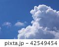 雲 入道雲 積乱雲の写真 42549454