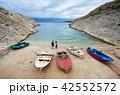 湾 海 海岸の写真 42552572