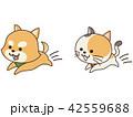 ペット 犬 猫のイラスト 42559688