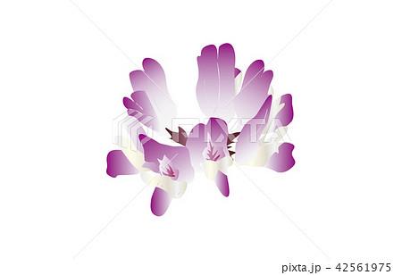 都道府県の花シンプル岐阜レンゲソウ 42561975