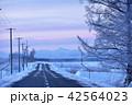 北海道の冬の道(更別町) 42564023