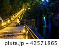 高千穂峡 真名井の滝 ライトアップの写真 42571865