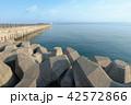 陸奥湾 防波堤 海の写真 42572866