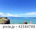 海 海岸 自然の写真 42584788