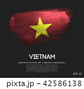 Vietnam Flag Made of Glitter Sparkle Brush Paint 42586138