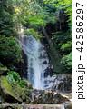 御手洗の滝 42586297
