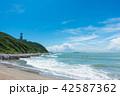 伊良湖岬 夏 海の写真 42587362
