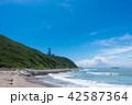 伊良湖岬 夏 海の写真 42587364