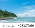 伊良湖岬 風景 海の写真 42587369