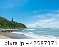 伊良湖岬 夏 海の写真 42587371