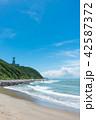 伊良湖岬 夏 海の写真 42587372