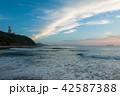 伊良湖岬 夏 海の写真 42587388