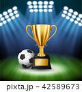サッカー フットボール 蹴球のイラスト 42589673