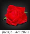 花 花びら バラのイラスト 42589697