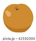 梨 果物 フルーツのイラスト 42592000