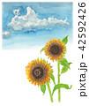 花 ひまわり 向日葵のイラスト 42592426