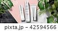 広告 宣伝 化粧のイラスト 42594566