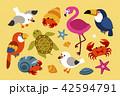 Hot summer tropical creatures 42594791