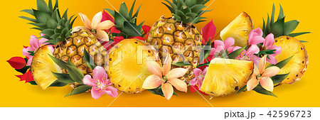 Pineapple and tropical flowers 42596723